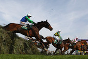 A.P.McCoy and Dont Push It Photos Photo