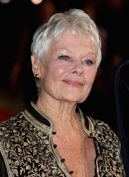 ... judi dench actress dame judi dench attends the philomena american