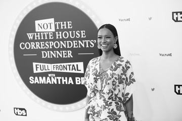 Karrueche Tran 'Full Frontal With Samantha Bee's Not The White House Correspondents' Dinner - Red Carpet