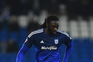 Kenwyne Jones Cardiff City v Brentford - Sky Bet Championship
