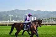 Ryan Moore and Highland Reel Photos Photo