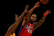 Rasual Butler and Metta World Peace Photos Photo