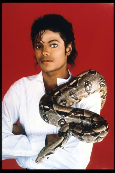 "Michael Jackson 382639 01: Entertainer Michael Jackson poses with his pet boa constrictor September 15, 1987 in the USA. Jackson, who was the lead singer for the Jackson Five by age eight, reached the peak of his solo career with 1982''s ""Thriller,"" the best-selling album of all time and recipient of eight Grammy awards."