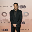 Michael Ealy Premiere Of HBO's