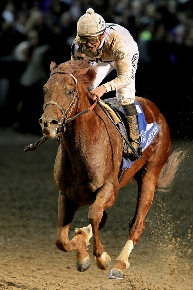 2011 Breeders' Cup World Championships - Day 2 []