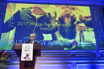 Moby The Tailwaggers Foundation, 2017 Waggy Awards