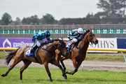 Bizzwinkle ridden by Sam Spratt wins Race 9  Christchurch Casino 155th New Zealand Cup during New Zealand Cup and 1000 Guineas Day at Riccarton Park Racecourse on November 17, 2018 in Christchurch, New Zealand.