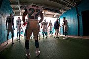 Reggie Bush #22 of the Miami Dolphins prepares to take the field during a game against the New England Patriots at Sun Life Stadium on December 2, 2012 in Miami Gardens, Florida.