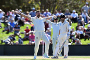 James Anderson of England unsuccessfully appeals for the wicket of Kane Williamson of New Zealand (R) during day two of the Second Test match between New Zealand and England at Hagley Oval on March 31, 2018 in Christchurch, New Zealand.