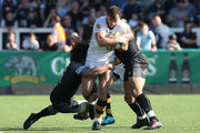 Josh Bassett of Wasps is tackled by Juan Pablo Socino of Newcastle Falcons during the Aviva Premiership match between Newcastle Falcons and Wasps at Kingston Park on May 5, 2018 in Newcastle upon Tyne, England.