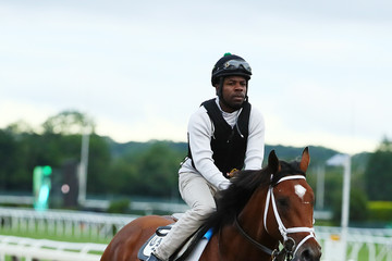 Patch 149th Belmont Stakes - Previews