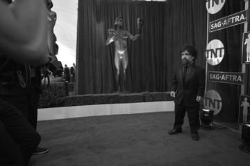 Peter Dinklage The 23rd Annual Screen Actors Guild Awards - Red Carpet