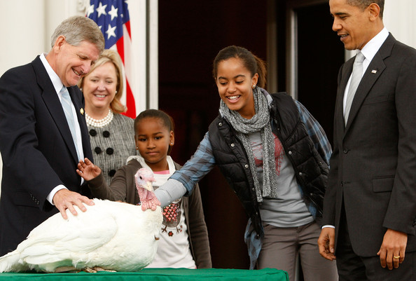 """Malia Obama (2nd R), daughter of U.S. President Barack Obama (R), pats a turkey named """"Courage"""" as her sister Sasha (C ) and Walter Pelletier (L), Chairman of the National Turkey Federation look on during a presidential pardon at the North Portico of the White House November 25, 2009 in Washington, DC. Presidential pardon of a turkey has been a long time Thanksgiving tradition that dates back the Harry Truman administration."""