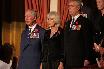 Prince Andrew Festival Of Remembrance 2014