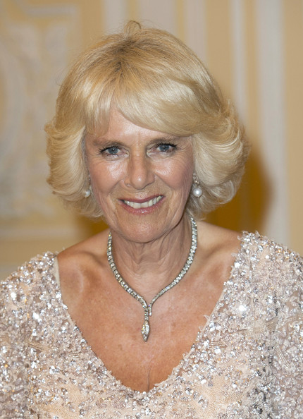 Camilla, Duchess of Cornwall attends a State Dinner at the Presidential Palace on October 29, 2014 in Bogota, Colombia. The Royal Couple are on a four day visit to Colombia as part of a Royal tour to Colombia and Mexico. After fifty years of armed conflict in Colombia the theme for the visit is Peace and Reconciliation.