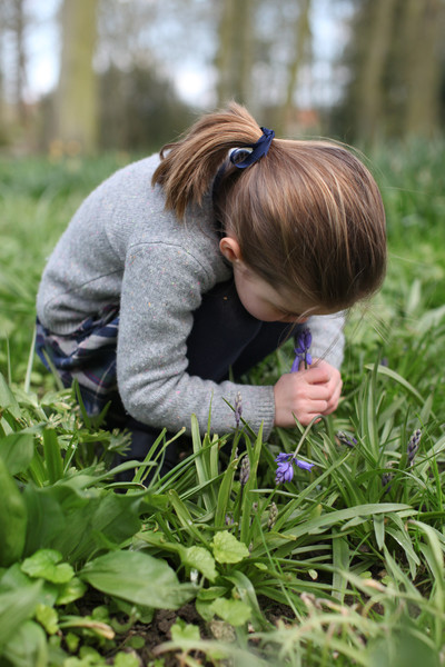 Princess Charlotte Smelling A Bluebell