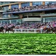Red Refraction Ascot Races - An Alternative View