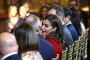 Queen Letizia of Spain attends at the 'Bellas Artes' Golden Medal Awards at the Palace of Merced on February 18, 2018 in Cordoba, Spain.
