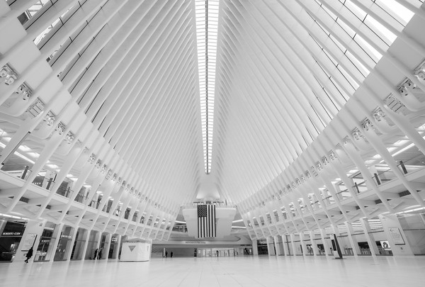 Daily Life In New York City Amid Coronavirus Outbreak [image,white,black,architecture,monochrome,black-and-white,line,ceiling,symmetry,building,daylighting,people,life,editors note,symmetry,black white,new york city,landmarks,home,coronavirus outbreak,airport terminal,daylighting,convention center,samsung - cml630d - mounting kit for plasma panel,angle,symmetry,metropolitan area,daytime,bridge\u2013tunnel]