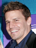 David Boreanaz Sarah Michelle Gellar rumored