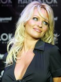 Pamela Anderson Kid Rock married