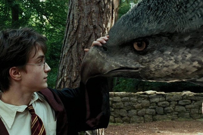 Can You Identify These Magical 'Harry Potter' Creatures