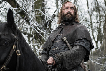 Who Will Win Cleganebowl. The Hound Versus The Mountain.