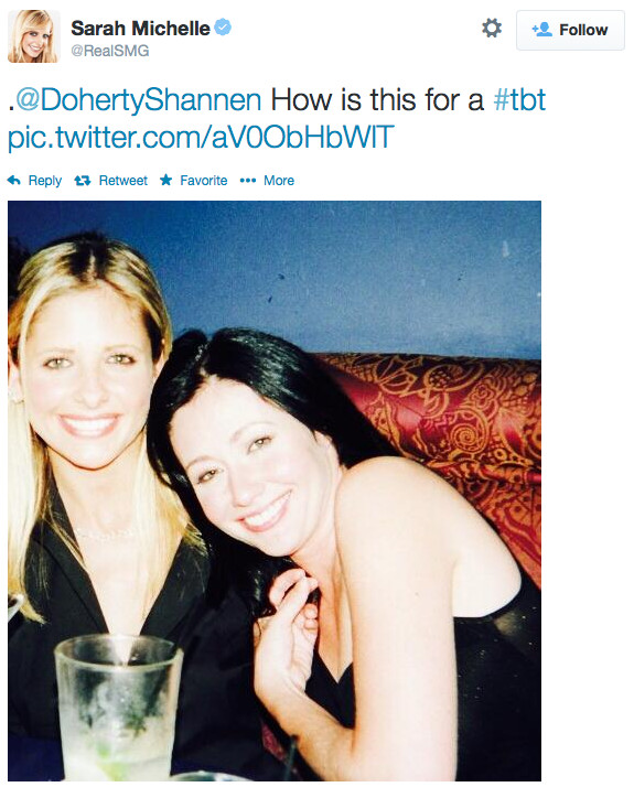 how did shannen doherty and holly marie combs meet