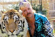 Everything To Know About Tiger King, The Wildest Documentary You'll Ever See