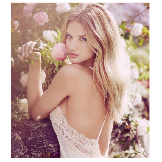 Rose Huntington-Whiteley stopped to smell the flowers.