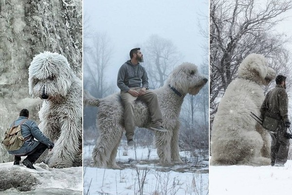 Your Dog Might Be Big, But It's Got Nothing on This Guy's