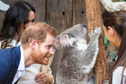 Silly Photos Of The Royal Family Being Un-Royal