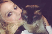 The Cutest Celebrity Cat Lovers on Instagram