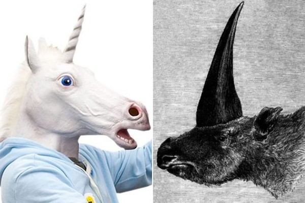 Yes, Unicorns Were Real, But They Didn't Look Like Horses