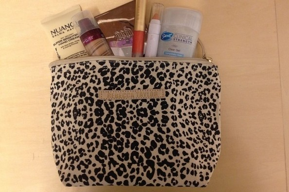 Beauty Deal of the Day—Birchbox's Rebecca Taylor Makeup Bag