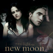 Meet the Cullens and the Swans from 'New Moon'