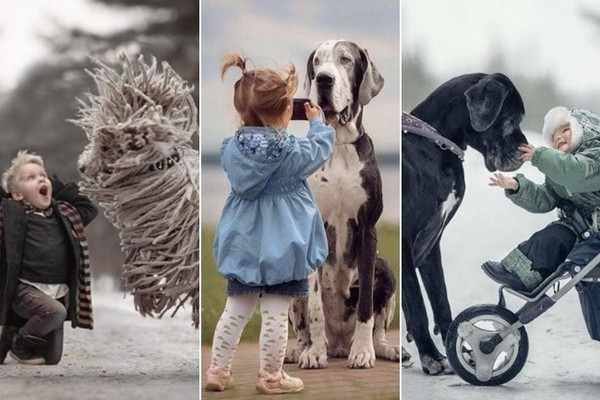 This Photo Series of Kids Playing With Their Huge Dogs Is Serious Stress Relief