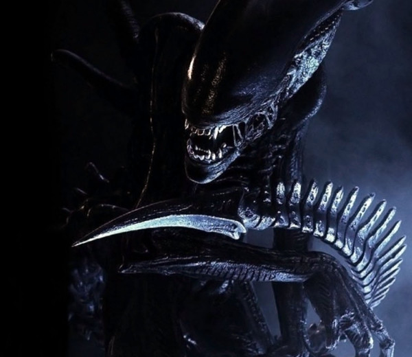 The Xenomorph Is Fear of Sex