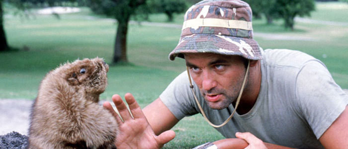 Bill Murray Is Opening a 'Caddyshack'-Themed Bar