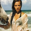 Isabel Lucas Photos