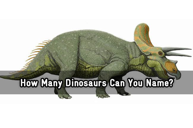 Quiz Are These Dinosaur Names Real Or Made Up