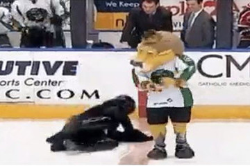Watch Darth Vader Take a Slippery Spill at a Hockey Game