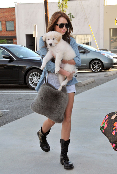 Miley Cyrus - Miley Cyrus Shopping in West Hollywood