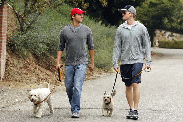 """New parents Neil Patrick Harris and David Burtka take their pooches for a stroll. The """"How I Met Your Mother"""" star announced via Twitter that he and David had become parents to twins earlier this week. Delivered by a surrogate, the new family arrivals are called Gideon and Harper."""