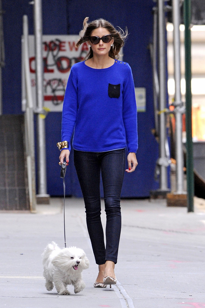 Olivia+Palermo in Olivia Palermo Takes Her Dog for a Walk