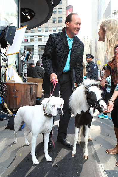 Einstein the smallest horse in the world - photo#24