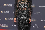 Maria Bello Sheer Dress