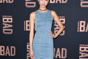 Soo Joo Park Denim Dress