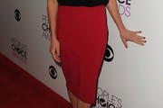 Allison Janney Pencil Skirt