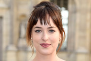 Dakota Johnson French Twist